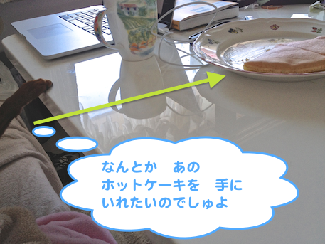 20130225.png