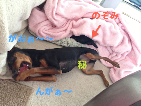 20130301-4.png