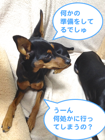 20130302-1.png