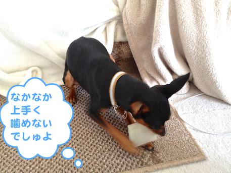 20130302-5.png