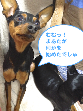 20130302.png