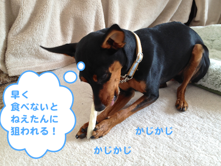 20130304-5.png