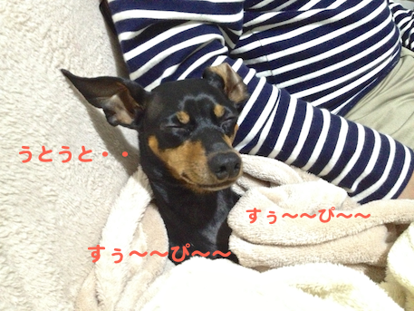 20130304-6.png