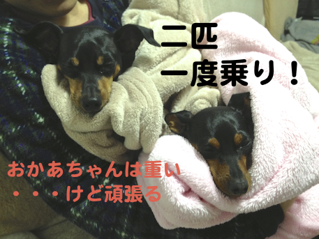 20130310-1.png