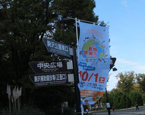 111001_02.jpg