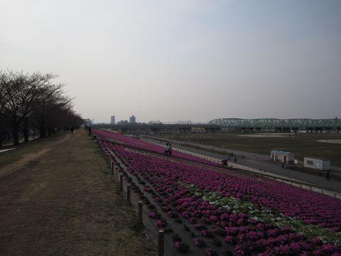 20110402-25.jpg