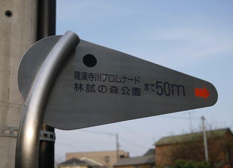 20110416-16.jpg