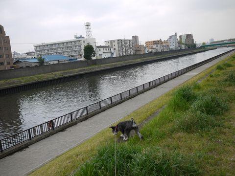 20110422-03.jpg