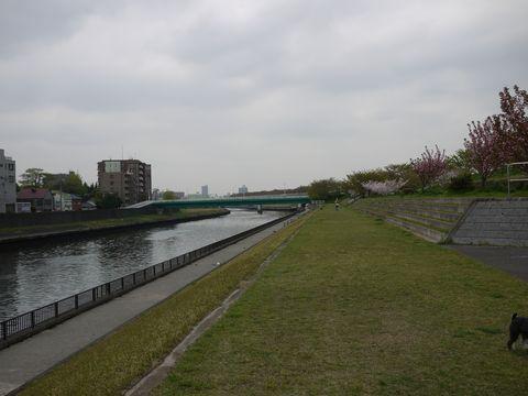 20110422-05.jpg