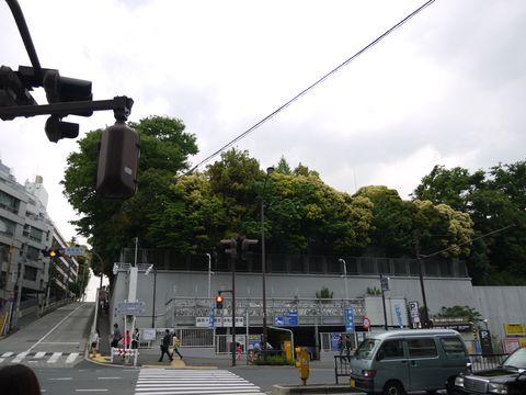20110514-83.jpg