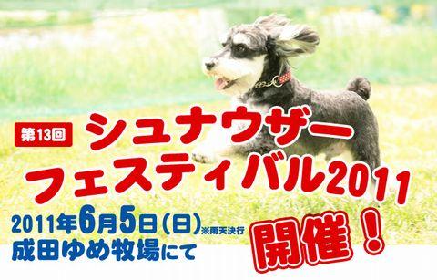 shunafes-kokuchi_01.jpg