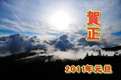 image2011.jpg