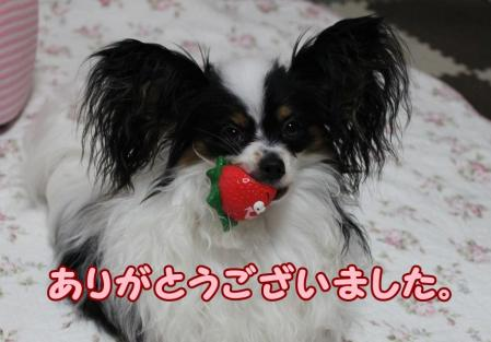 IMG_8305.jpg