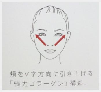 頬をV字方向に引き上げる『張力コラーゲン』構造