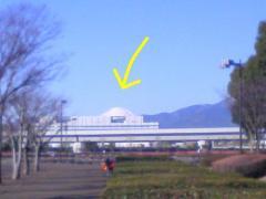 SN390286.jpg