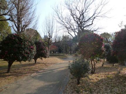 20120114.jpg
