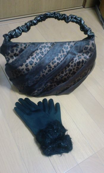 100209_バッグと手袋