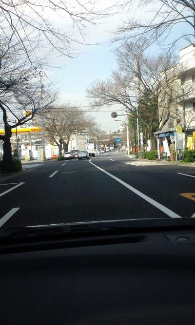 100317_中野通り03