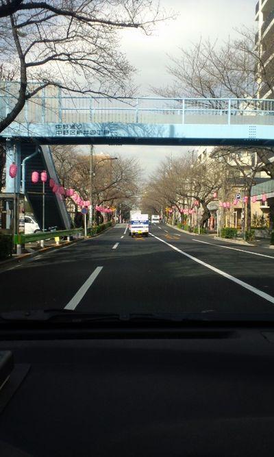 100317_中野通り01