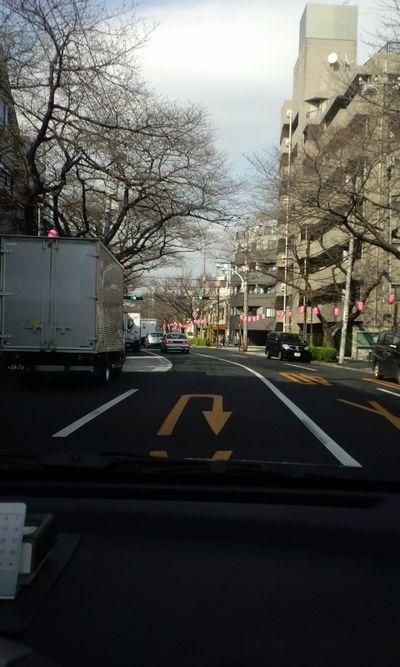 100317_中野通り02