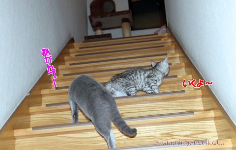 ピュア&エナ