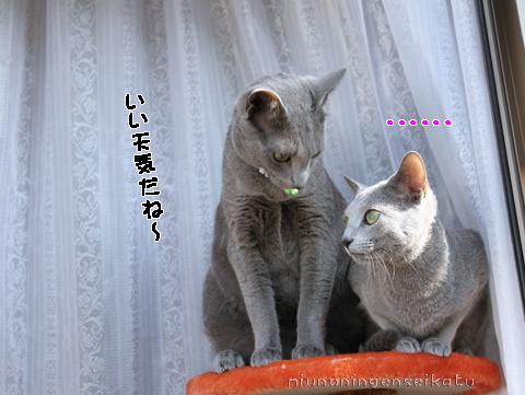 スバル&エナ