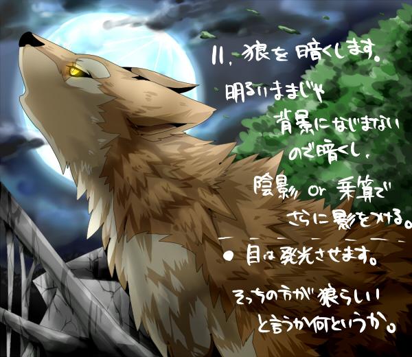 11_20110316111630.jpg
