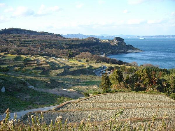 豊島段々畑