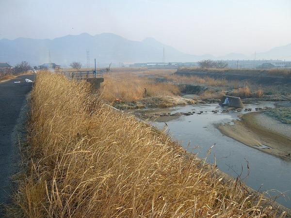 高瀬川清掃1