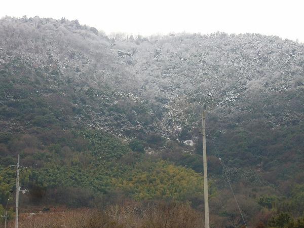 七宝山に雪