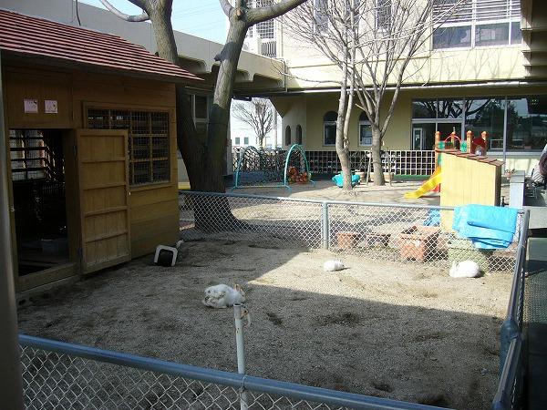 観音寺の保育園