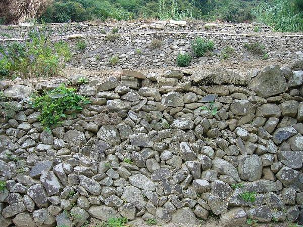 女木島の石垣畑1