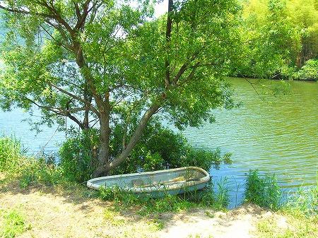 たんぼアートの舟
