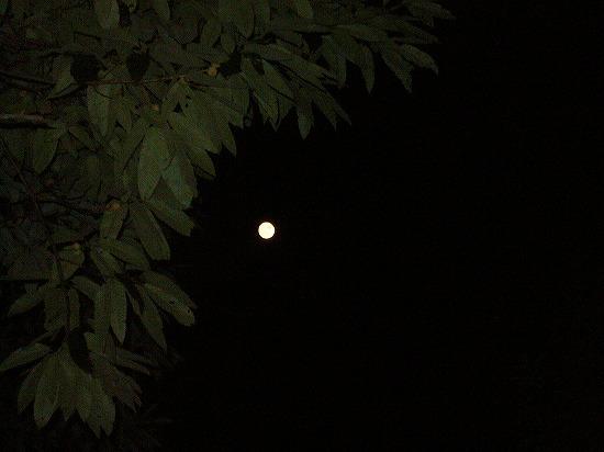 満月七宝山