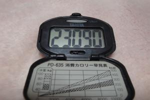 100109-060万歩計(縮小)