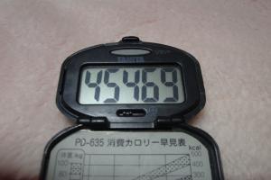 100110-050万歩計(縮小)