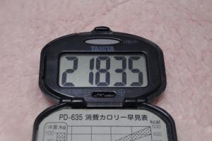 100116-050万歩計(縮小)