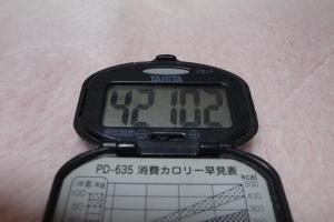 100117-060万歩計(縮小)
