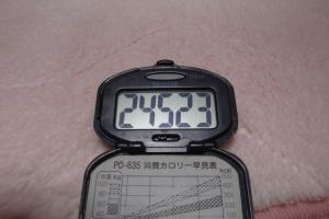 100123-050万歩計(縮小)