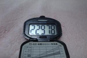 100130-060万歩計(縮小)