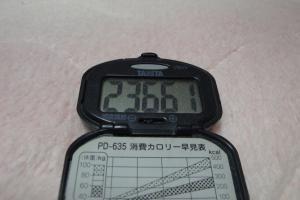 100206-050万歩計(縮小)