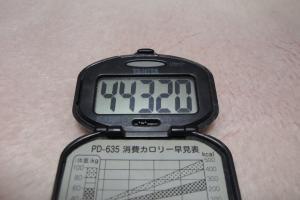 100207-060万歩計(縮小)