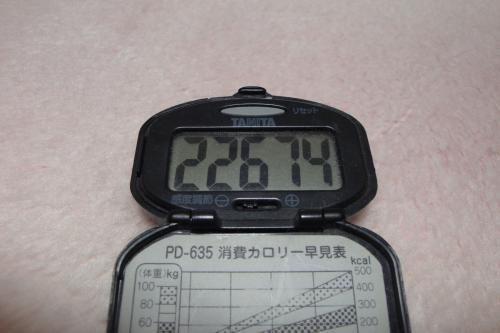 100211-050万歩計(縮小)