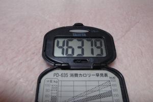 100213-060万歩計(縮小)