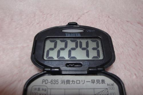 100220-050万歩計(縮小)