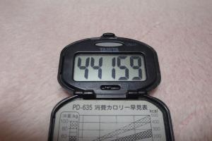 100221-040万歩計(縮小)
