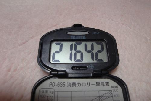 100227-060万歩計(縮小)