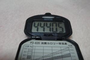100228-050万歩計(縮小)