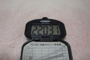 100306-050万歩計(縮小)