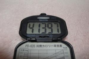 100307-050万歩計(縮小)
